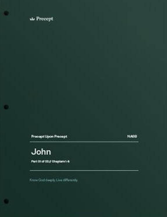 John Part 1 (Chapters 1-6)